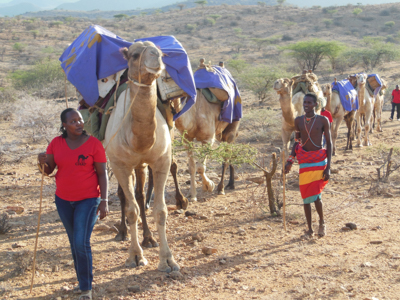 Clinic on the move via camel in northern Kenya